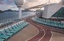 Беговая дорожка (Jogging Track)